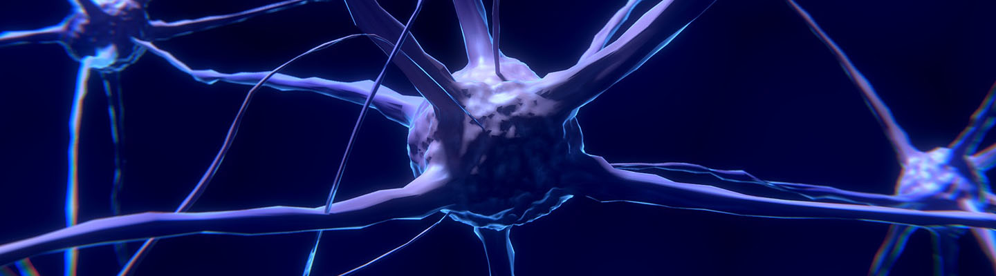 Picture of a brain cell