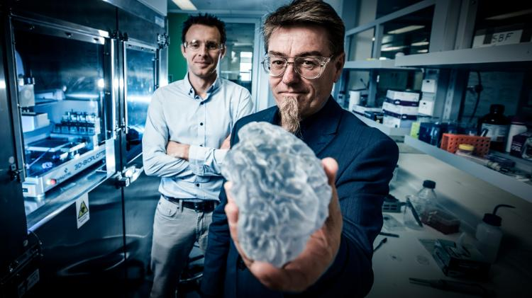 Prof Gordon Wallace and Dr Stephen Beirne from IPRI display 3D printed brain