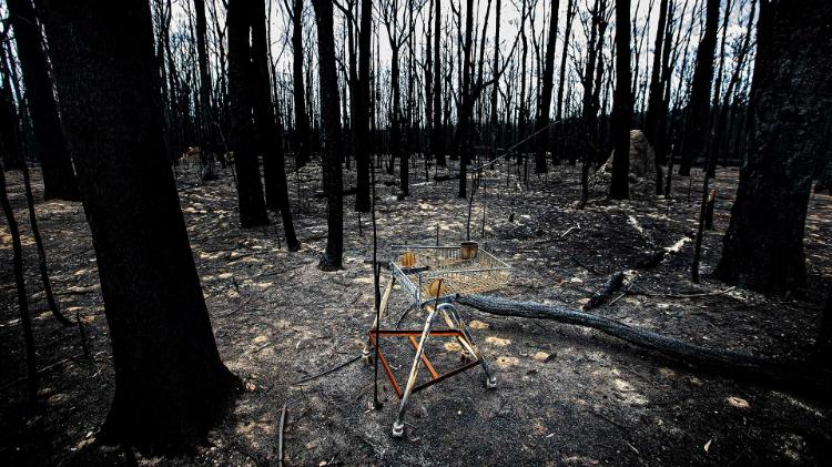 A disused shopping trolley in a burnt out forest following the 2019/2020 bushfire crisis