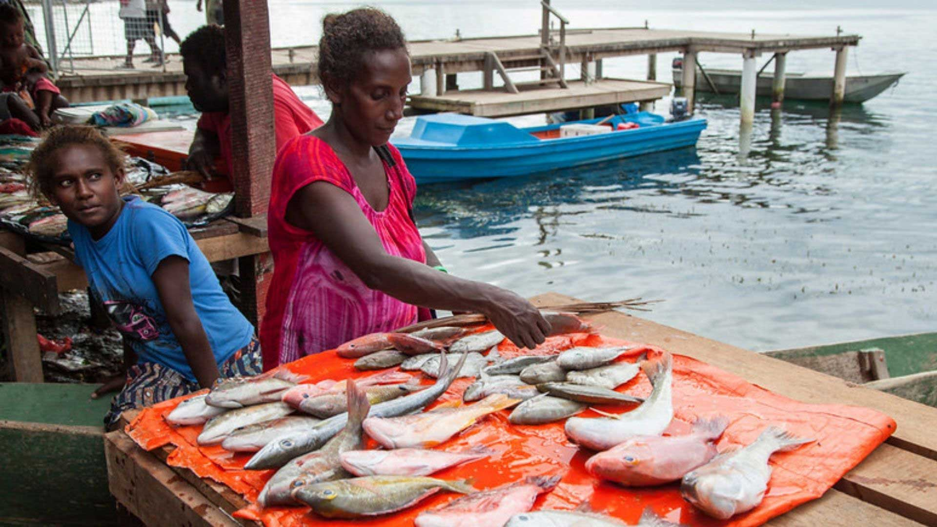 Women with reef fish for sale at Gizo market, by the ocean, Western Province, Solomon Islands. Photo by Filip Milovac, WorldFish