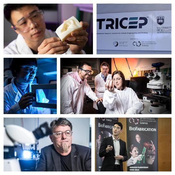 Collage of biomedical research images