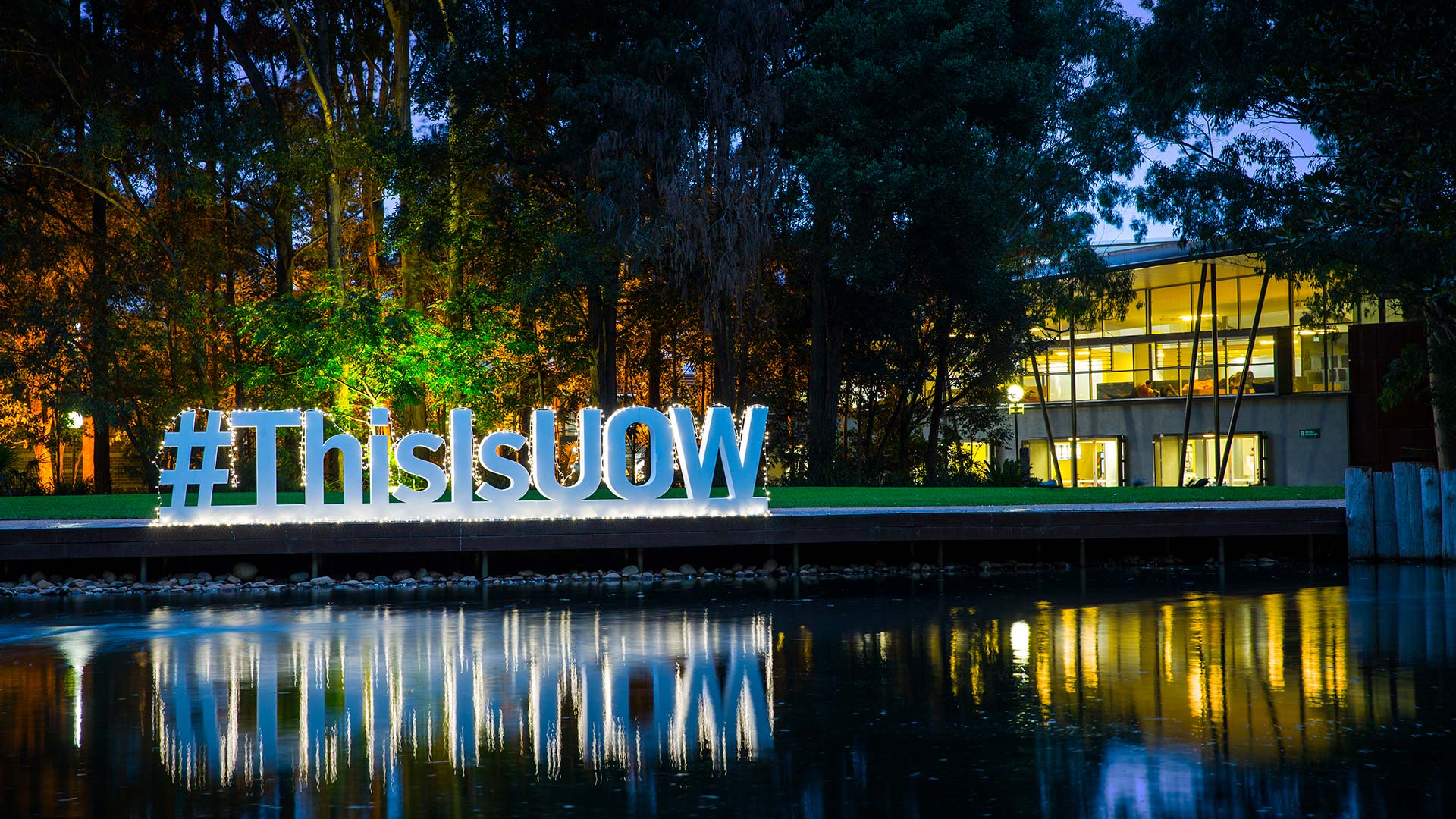 UOW Wollongong Campus duck pond lawn by night with #ThisIsUOW