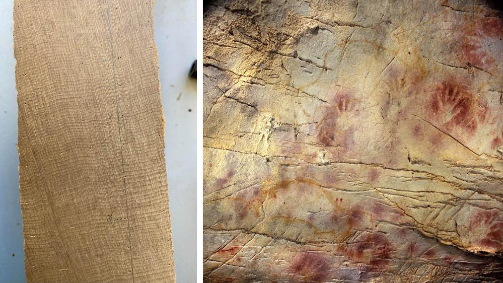 left: 5.	Rings on a slice of the Ngāwhā log. Photo: Jonathan Palmer. Right: 6.	Red ochre – which may have been used as an ancient form of sunscreen – is a common cave art motif. The centre of this cave art from Spain is believed to be almost 42,000 years old. Photo: Paul Pettitt, courtesy Gobierno de Cantabria.