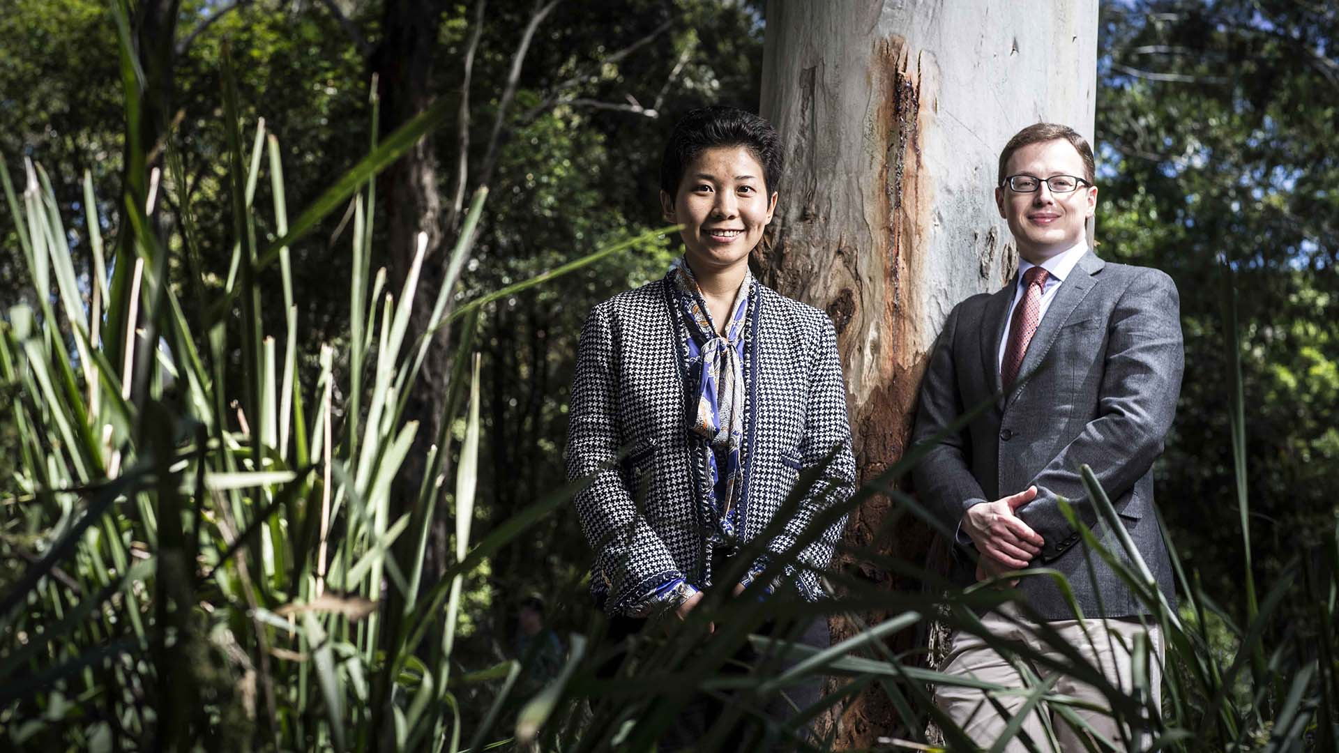 Urban trees found to improve mental and general health