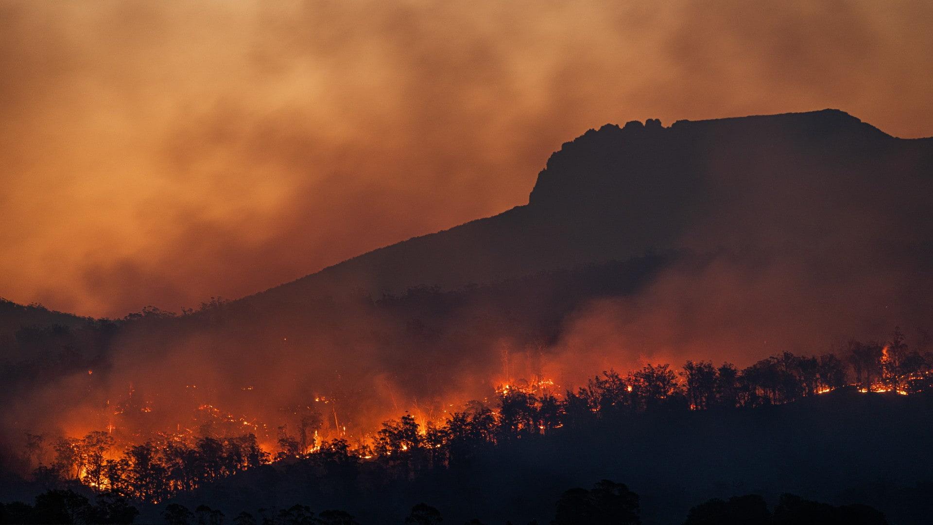 An image of bushfires burning in Australia. Photo: Matt Palmer/Unsplash